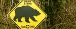 """Niedźwiedzia przysługa – jak UOKIK ZdroWita, Pollana i Bee&Free """"promował"""""""